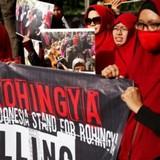 Кто стоит за исламо-буддийским терроризмом в Мьянме?: Митинги под руководством НКО «Хизб-ут-Тахрир» прошли в Москве